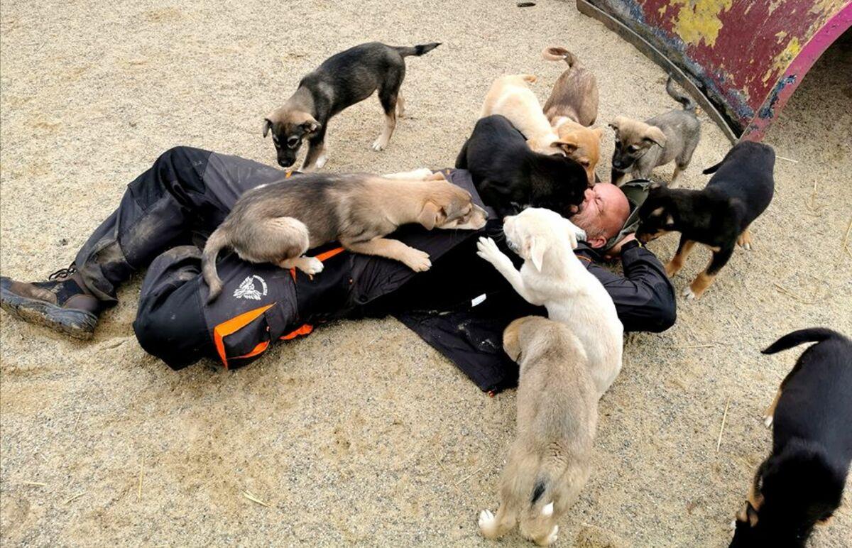 Einfach Tierschutz eV