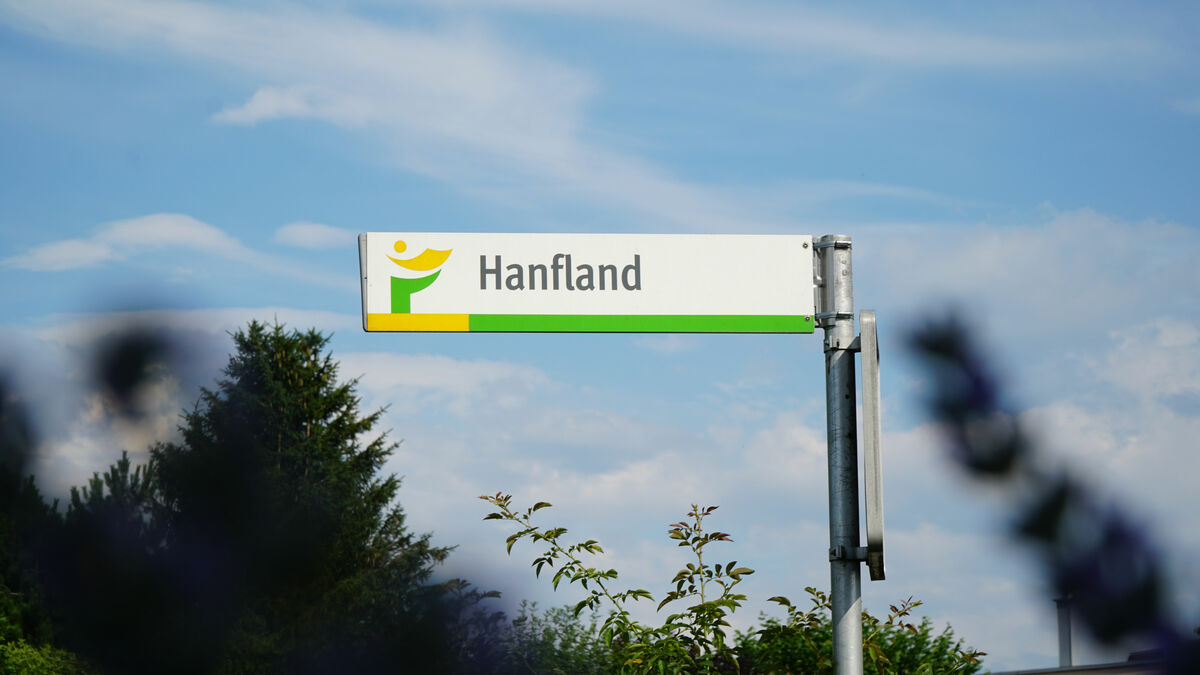 hanfland5